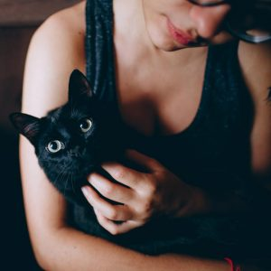 Kattenbak zwanger
